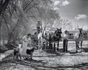 Caption: McKinney House (Santa Fe, N.M.; 1951), for House & Garden magazine. Julius Shulman. © J. Paul Getty Trust.