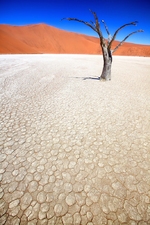 © Shutterstock, Inc.