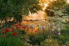 © GAP Gardens