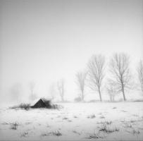 © Copyright 2009 Chip Forelli